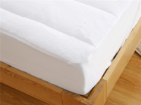 Super Soft Coral Fleece Quilted Filling Queen and king  Mattress Cover Protector